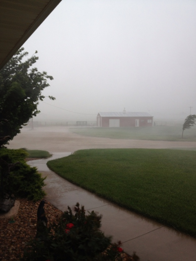 It was a wonderful rain, lasting all night and we had just a little over 3 inches of rain.