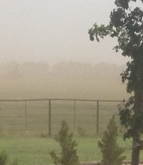 This is one of the windy day dust storms. Thankfully we've been getting some moisture and now the soybeans are up and he field is no longer blowing.